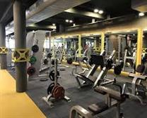 ROYAL GYM AND SPA IN JIND