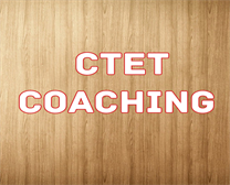 CTET COACHING IN HANSI