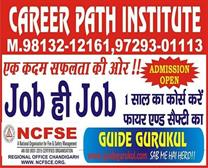 CAREER PATH INSTITUTE IN NARWANA