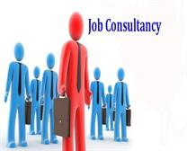 Job Consultant in Kaithal