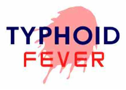 Typhoid Best Treatment in Tohana
