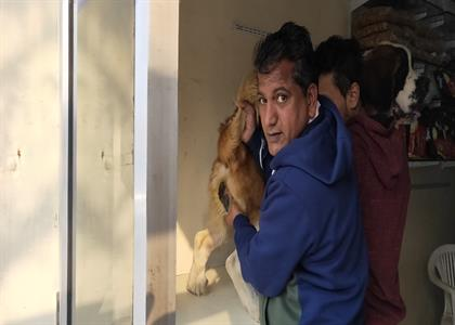 Dogs Treatment in Kaithal