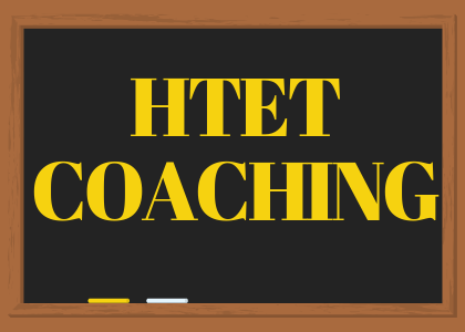 HTET Coaching in Rohtak