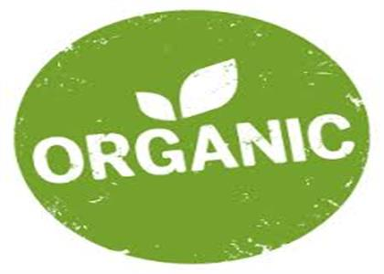 Organic Product In Narwana