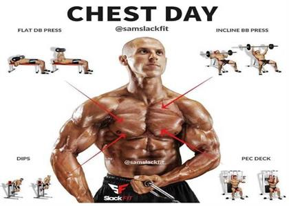 Chest Exercise In Bahadurgarh