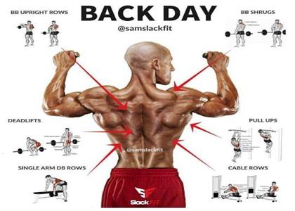 Best Back exercise in bahadurgarh