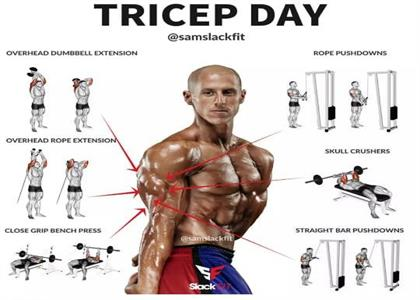 Tricep exercise In Bahadurgarh
