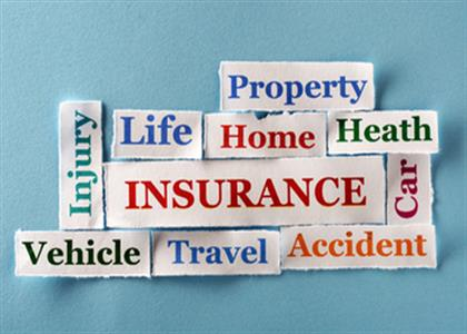 Insurance Service In Bahadurgarh