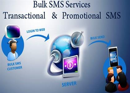Bulk SMS Services In Haryana