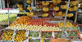 SHRI SHYAM FRUIT SHOP JIND